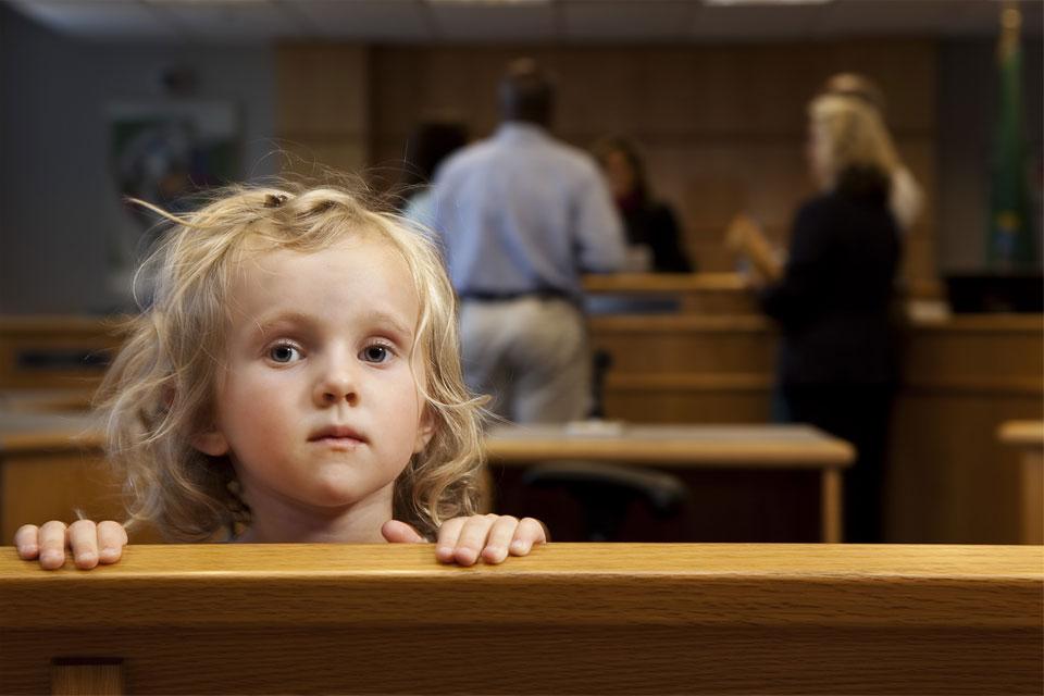 litigation guardian